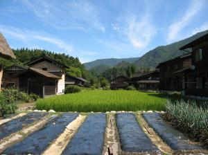 Shirakawa-go views